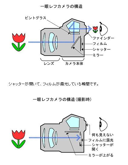 DSLR.jpg